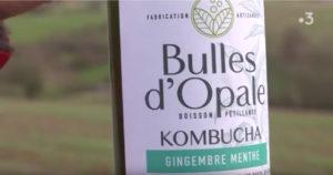 Le Kombucha, la petite boisson qui monte, en fabrication sur la Côte d'Opale, FR3 Hauts-de-France