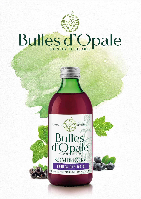 Fruits des bois, Kombucha bio Bulles d'Opale