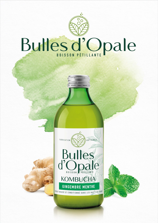 Gingembre menthe, Kombucha bio Bulles d'Opale