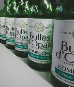 Terres et Territoires, Bulles d'Opale, un Kombucha bio produit dans le Pas-de-Calais (diaporama phjotos), kombucha gingembre menthe